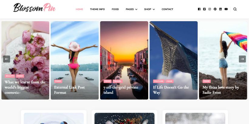 Blossom-Pin-WordPress-Theme