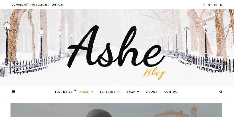 ashe-free-wordpress-theme