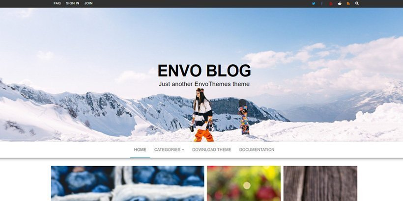 envo free wordpress blog themes