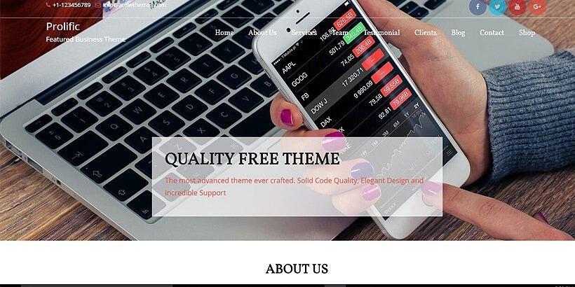 prolific free wordpress business themes