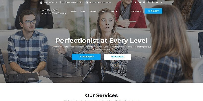 rara busineess free wordpress business themes