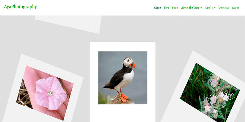 ayaphoto free photography wordpress themes