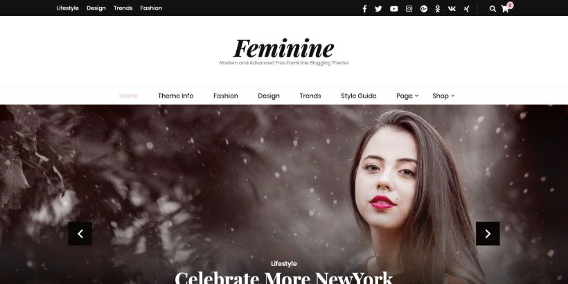 Blossom-Feminine-WordPress-Theme