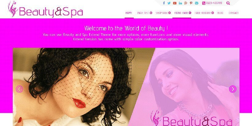 beauty&spa free beauty wordpress themes