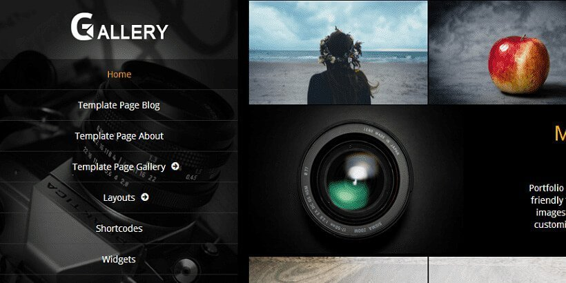 gallery free portfolio wordpress themes