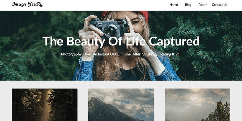 imagegridly free photography wordpress themes