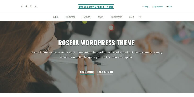 roseta free portfolio wordpress themes