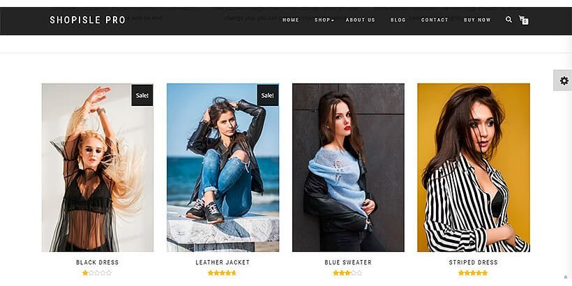 shopisle best woocommerce themes