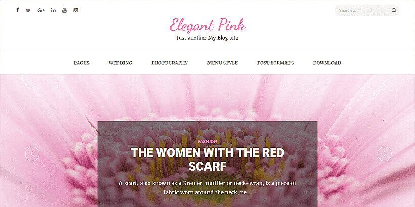 elegant free feminine wordpress themes