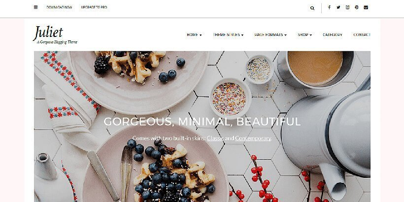 juliet free feminine wordpress themes