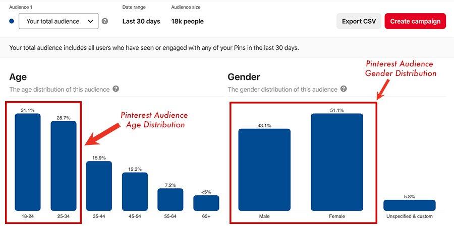 Pinterest Audience