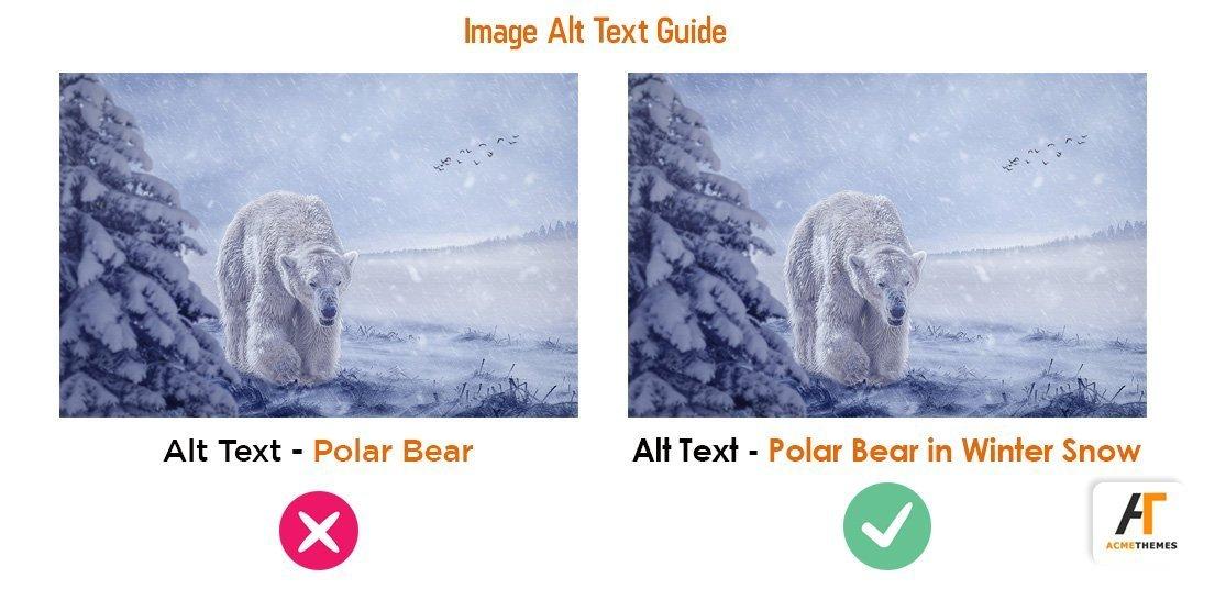 alt image guide