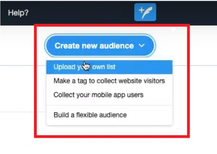 create a Tailored Audience