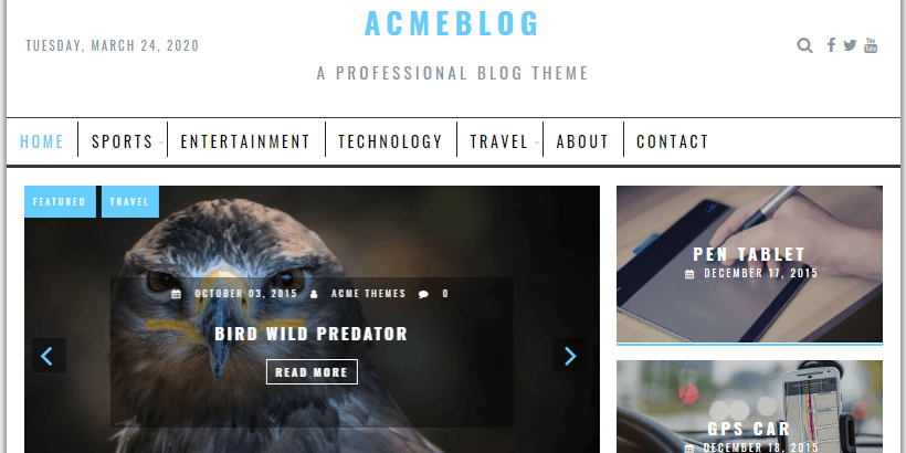 acmeblog-free-wordpress-theme-for-writers-and-authors