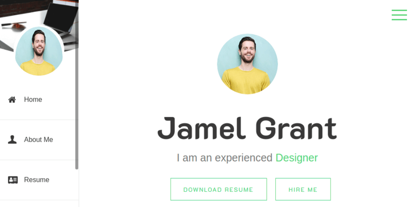 online-cv-resume-wordpress-theme