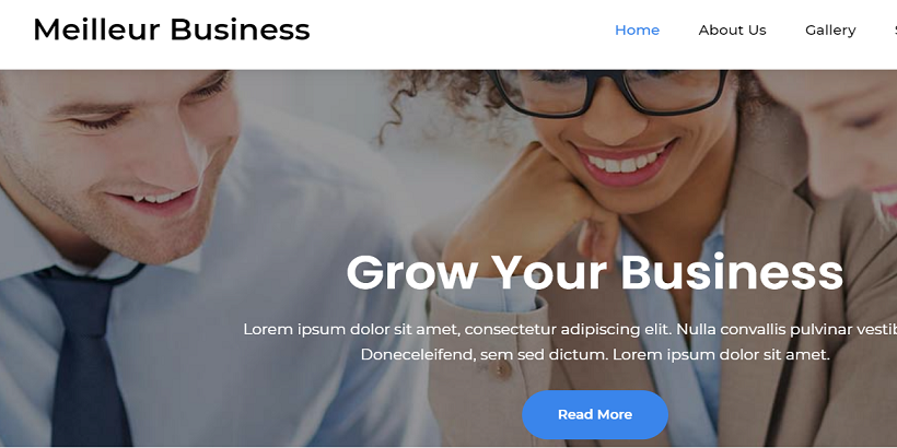 Meilleur-Business-Best-Free-Consulting-WordPress-Themes