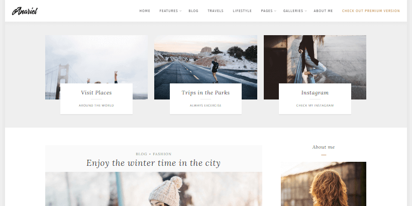 anariel-free-minimal-feminine-blogging-wordpress-theme