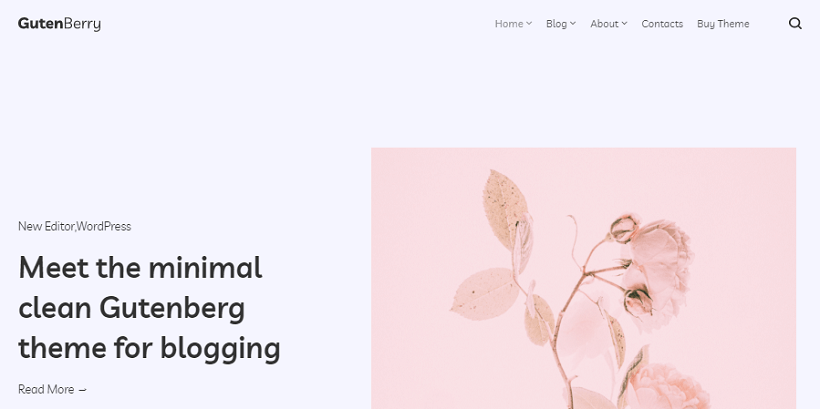 gutenberry-best-gutenberg-wordpress-themes