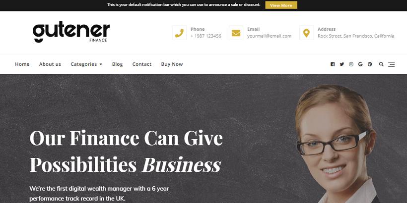 gutener-pro-consulting-wordpress-theme