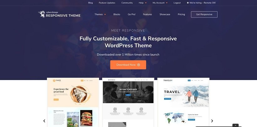 Premium-Responsive-WordPress-Themes-Templates-CyberChimps
