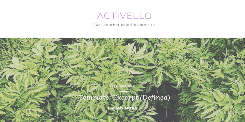 Activello-Best-WordPress-theme-for-fashion-blogs