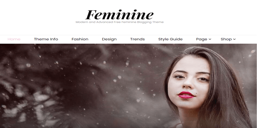 Blossom-Feminine- Best-WordPress-theme-for-fashion-blogs