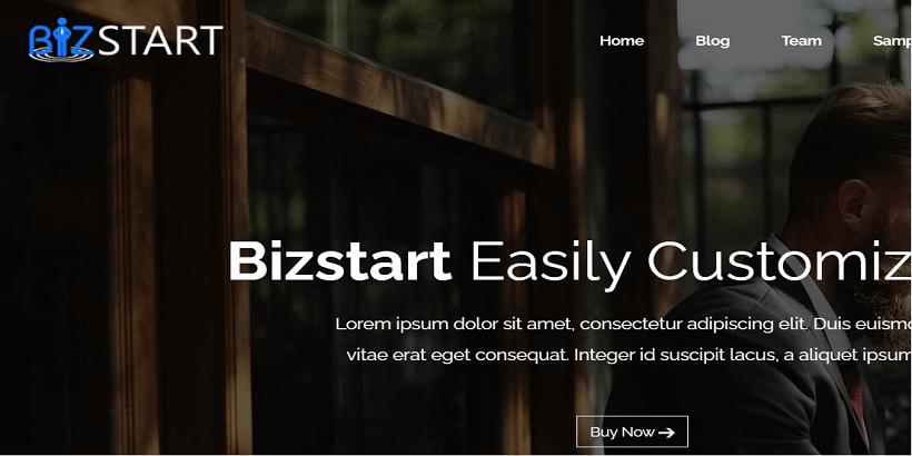 Bizstart-best-wordpress-theme-for-digital-marketing-agency