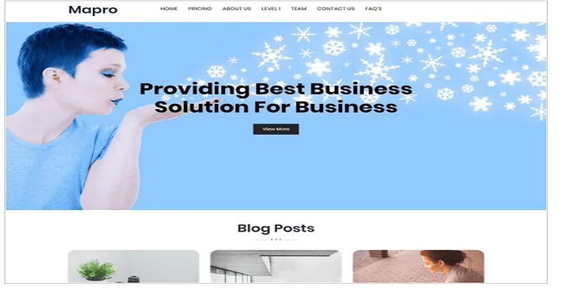 Mapro-best-wordpress-theme-for-digital-marketing-agency