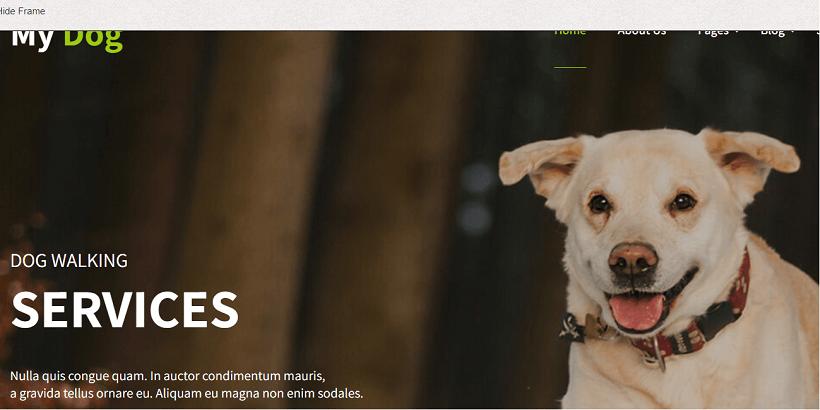 My-Dog-Lite-Best-WordPress-theme-for-pet-and-animal-blog