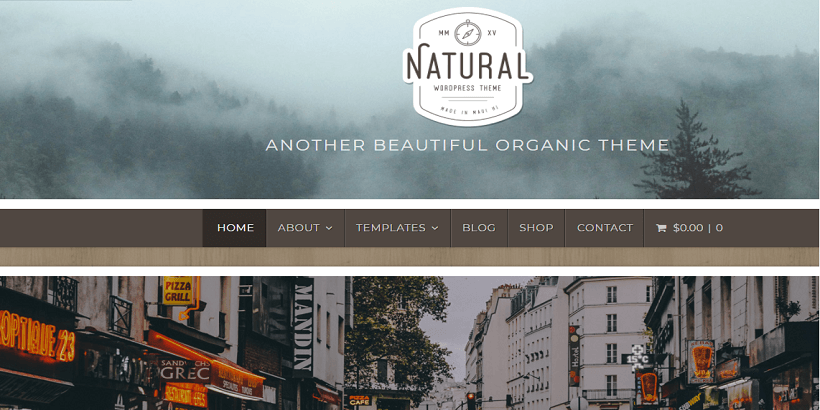 Natural-Lite-best-wordpress-themes-for-gardening-and-landscaping-businesses