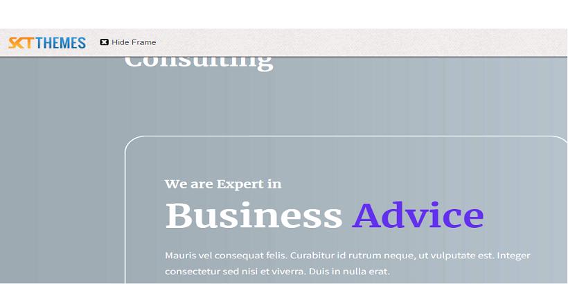 SKT-Consulting-Best-WordPress-theme-for-Digital-Marketing-Agency