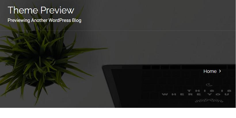 Profisme-best-wordpress-theme-for-digital-marketing-agency