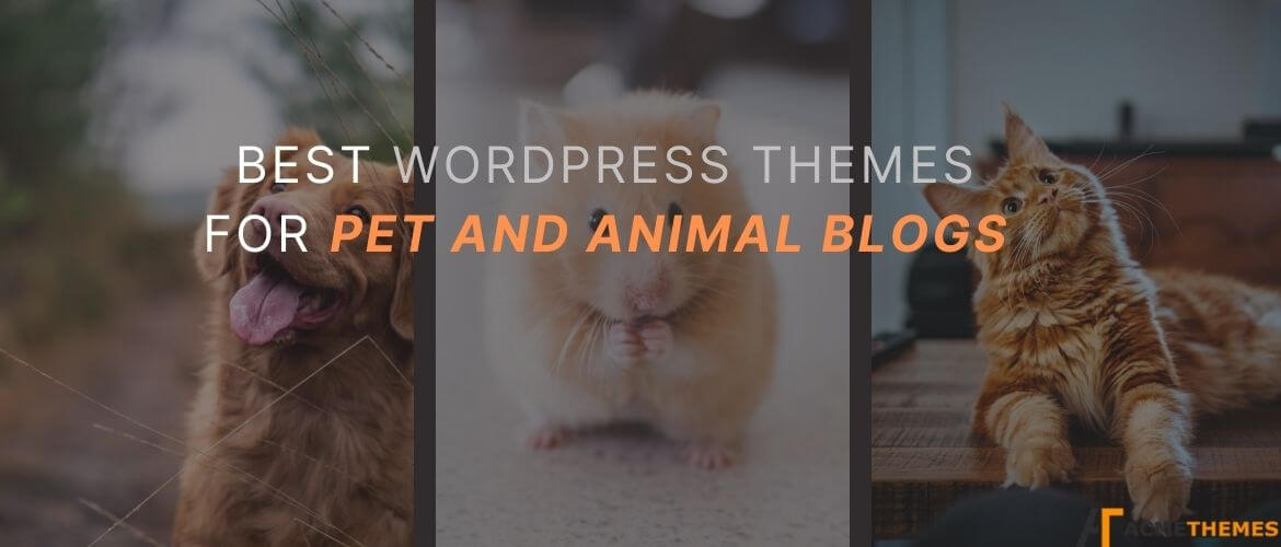 Best-WordPress-Themes-for-Pet-and-Animal-blogs