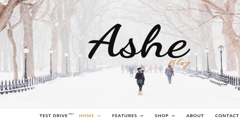 Ashe-Best-free-Fullscreen-themes